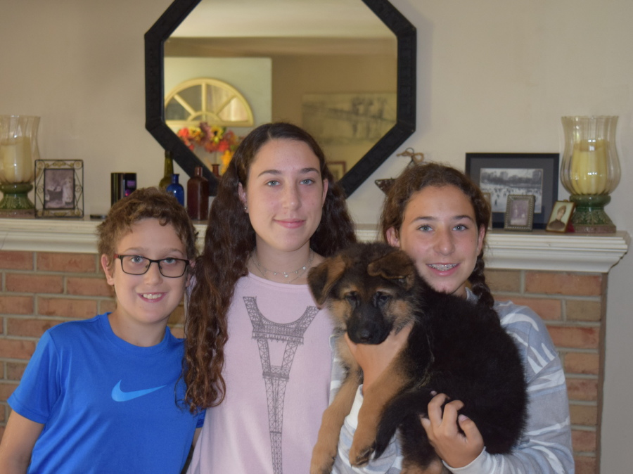Happy kids with a German Shepherd puppy